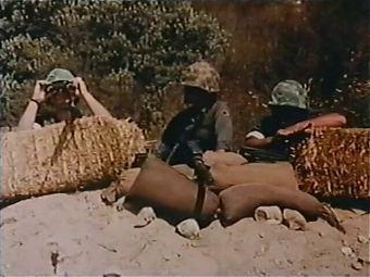 Fox Holes (1983, US, Lisa Deleeuw, full movie, DVD rip)